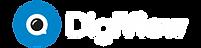 DigiView_Negativ_Logotype-300x159.png