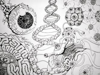 Anatomical Fractals