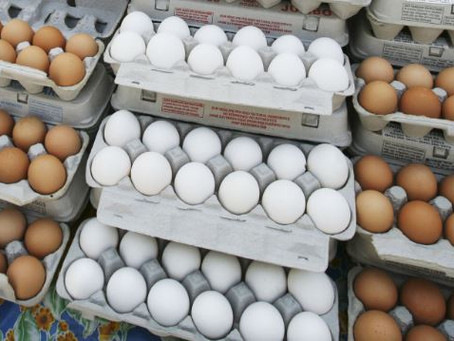 Nigeria's Poultry, Egg Prices 'Highest Ever' Amidst Inflation, Insecurity