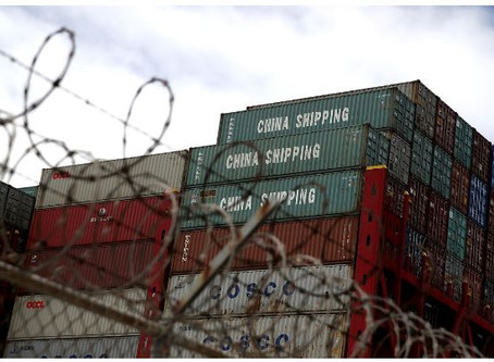 US prepares orders blocking cotton, tomato imports from China's Xinjiang over forced labour