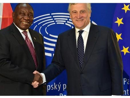 EU Grants South African Rooibos Tea Champagne-Level Status