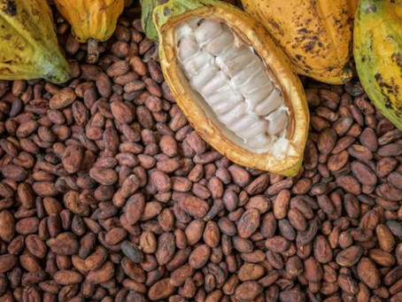 'Let's consume cocoa products to boost Ghana Beyond Aid'
