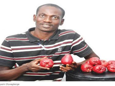 Agronomist Explains Business Opportunities In Bell Apples Farming