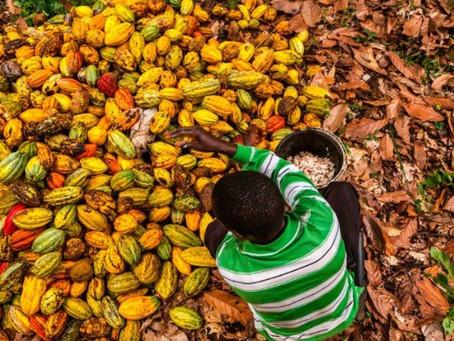 US Supreme Court blocks child slavery lawsuit against chocolate firms