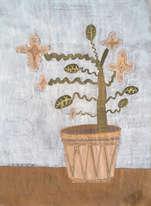 植物 plants
