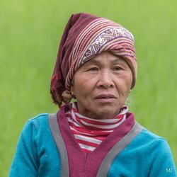 Vietnam17