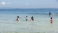 Île de Pamilacan17