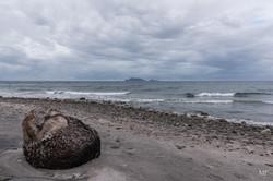 Île de Negros16