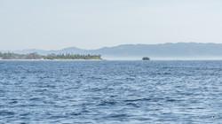 Île de Pamilacan13