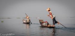 Lac Inle - Pêcheurs