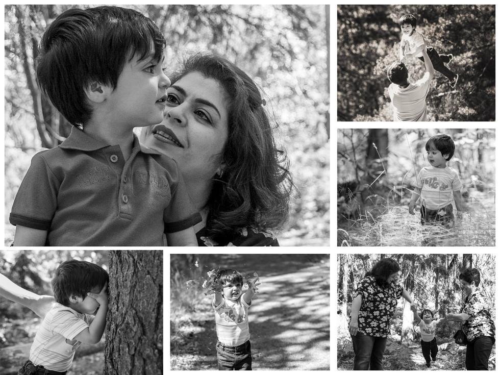 Collage6a.Haleh.jpg