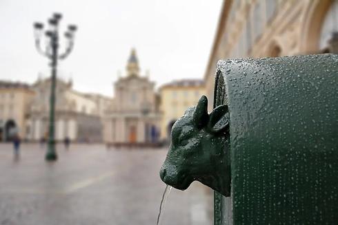 toret-fontana-toro.webp
