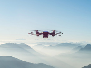 PORQUE LAS EMPRESAS NO AVANZAN: MIRADA A ALTURA DE DRONE