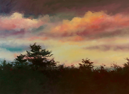 Pink Clouds and Pines by Sandra Leinonen Dunn