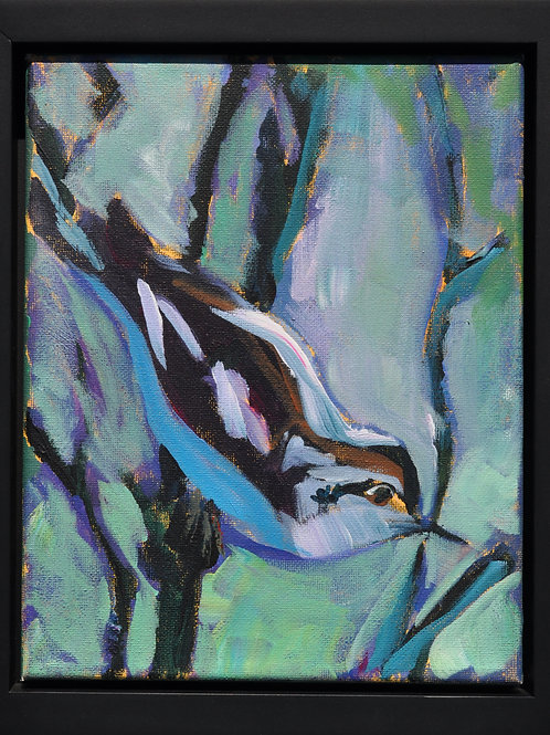 Nuthatch by Catherine Bickford