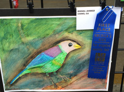 1st Place Winner,Manal Ahmed