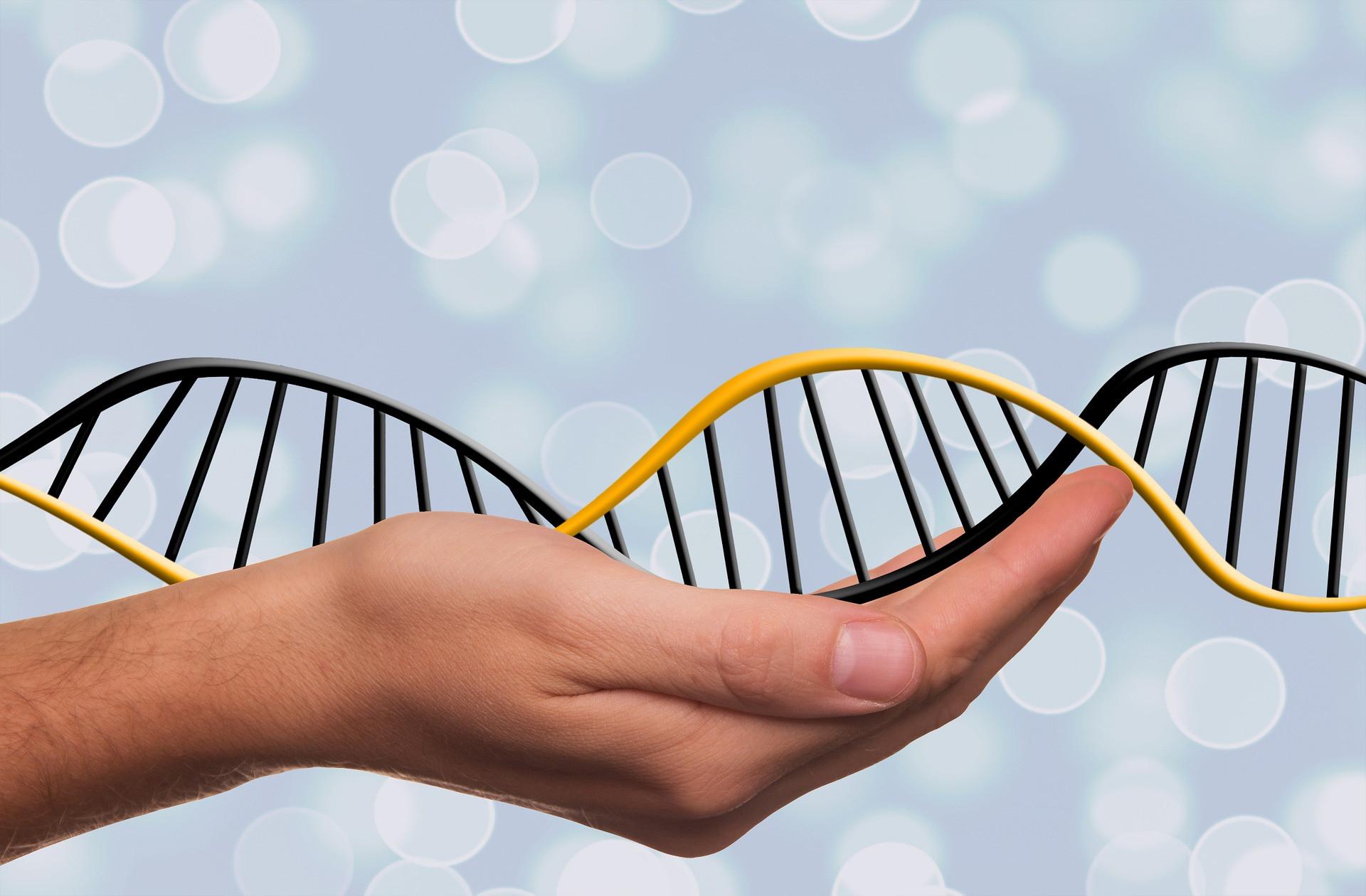 Genetic Testing and Nutrigenomics Advice