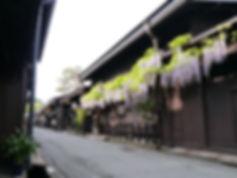古い街並み+藤棚.jpg
