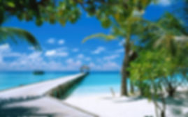 beach-path-wallpapers-60805-7579041.jpg