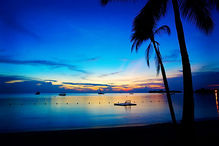 Beautiful-Jamaica-Night-Wallpaper.jpg
