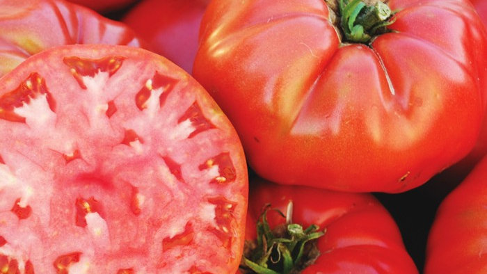 Tomato- Mortage Lifter