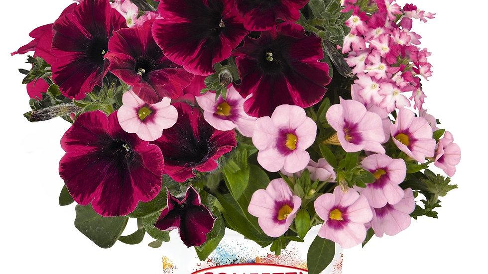 Combo - Confetti Garden Shocking Pink