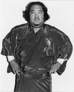 Yasa Fuji
