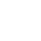 icone Webdiffusion.png