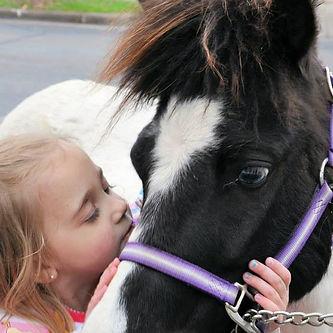 Pony Ponies