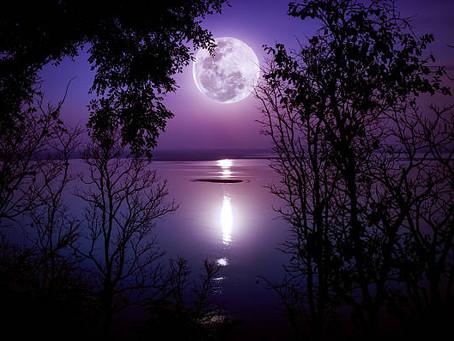 Pleine Lune du 5 juillet 2020. Au menu Souplesse et adaptation