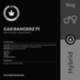 GAS BANGERZ F1-01.png