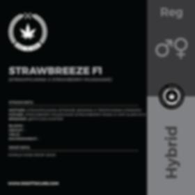 STRAWBREEZE F1-01.png