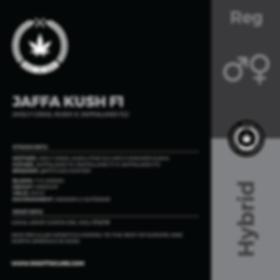 JAFFA KUSH F1-01.png