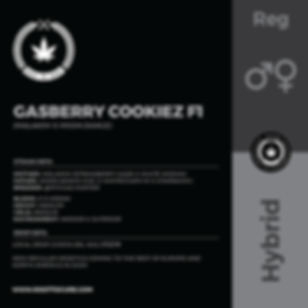 GASBERRY COOKIEZ F1-01.png