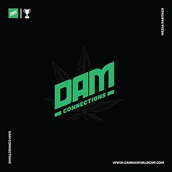 DAM CONNECTIONS - MEDIA PARTNER SLIDE B2