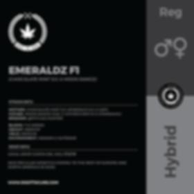 EMERALDZ F1-01.png