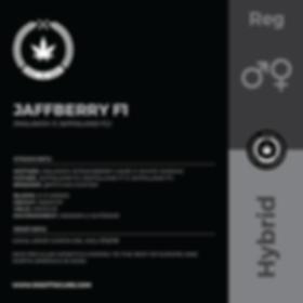JAFFBERRY F1-01.png