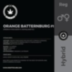 ORANGE BATTERNBURG F1-01.png