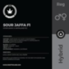 SOUR JAFFA F1-01.png