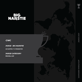 BIG NARSTIE SLIDE 2-01.png