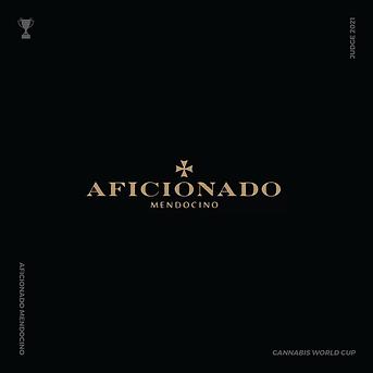 AFICIONADO SLIDE 1-01.png