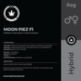MOON PIEZ F1-01.png
