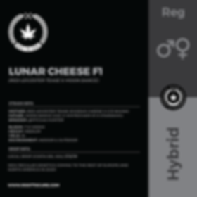 LUNAR CHEESE F1-01.png