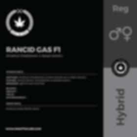 RANCID GAS F1-01.png