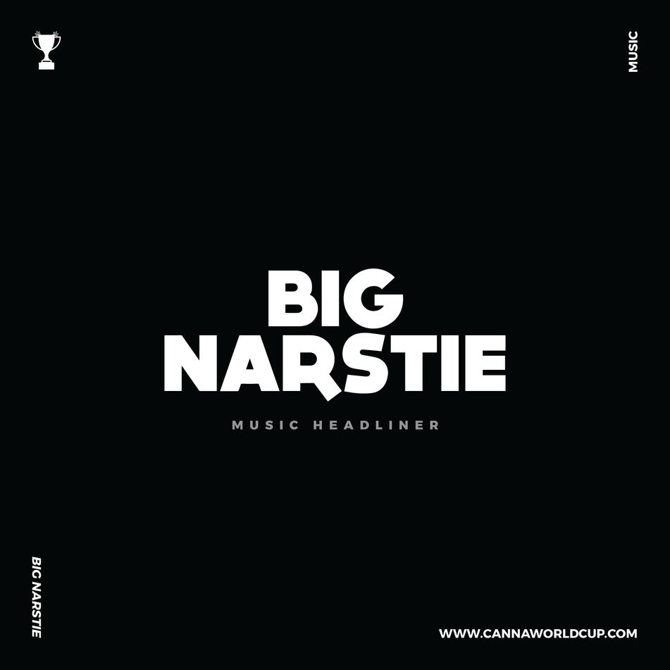 BIG NARSTIE SLIDE 1-01.png
