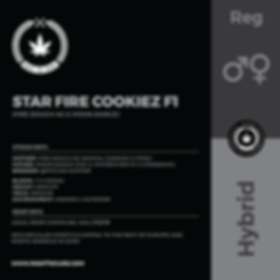 STAR FIRE COOKIEZ F1-01.png