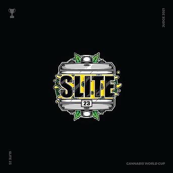 SLITE 23 SLIDE 1-01.png