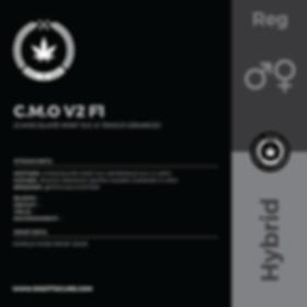 C.M.O V2 F1-01.png