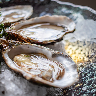 Creuse oesters