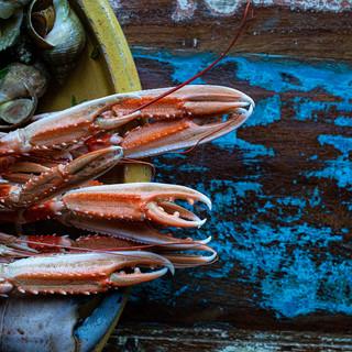 Plateau fruits de mer uit de Noordzee